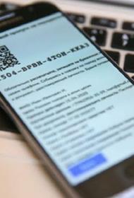 В Приморье из-за проблем с электронными пропусками профильного министра отправили в отставку