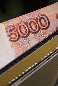 Сенатор: резкий рост спроса на наличные  связан с паническими настроениями россиян