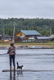Росрыболовство: рыбалке быть, запрета из-за пандемии не будет