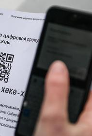 Запущен сервис проверки привязки карты «Тройка» и авто к цифровому пропуску