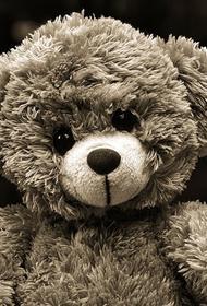 В США пятилетняя девочка скончалась от редкого осложнения COVID-19