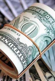 Эксперт считает, что доллар ждет неизбежная девальвация