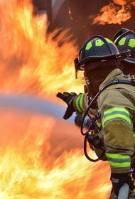 Пожар в Кузбассе уничтожил фельдшерско-акушерский пункт, горят еще десять домов