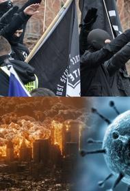 «Так хочет Бог. Дубль 2020».  В создании COVID-19 могут быть виновны религиозные террористы