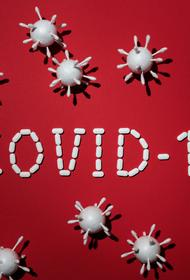 Число зараженных коронавирусом в Израиле в настоящее время- 14 882