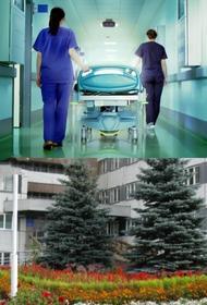 Что стоит за падением с пятого этажа руководителя красноярского госпиталя