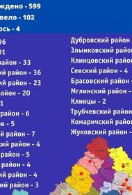 В Брянской области зафиксировано 78 новых случаев заражения коронавирусом, всего заразились  599 человек