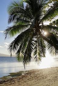Власти Фиджи отказали в посадке самолету, который должен был забрать граждан РФ