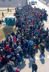 Польские власти готовят чартерные рейсы для украинских мигрантов
