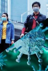 Харбинский кризис: вторая волна или просто локальный случай?  О новой вспышке коронавируса на территории Китая
