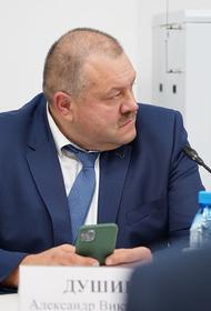 Мэр Усть-Кута Александр Душин объяснил поджог леса чиновниками: «Политика»