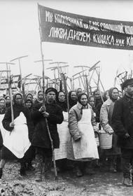Пора сказать правду: половина всех жертв Сталинизма были  крестьяне