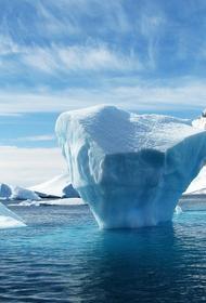 NASA опубликовало видео, показав масштабы таяния ледников в Антарктиде