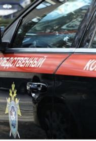 Некоторые подробности о жизни двух  мальчиков, выпавших из окна 11 этажа в Москве