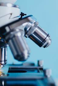 Ученые назвали причину высокой  заразности нового коронавируса