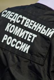 В СКР подтвердили  гибель бизнемена  Дмитрия Босова