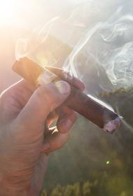 Эксперт рассказал, что курильщики больше подвержены легочным заболеваниям