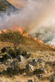 На бывшем арсенале в Удмуртии горит трава, взрываются боеприпасы