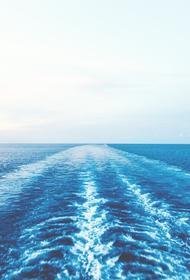 Пираты напали сразу  на два корабля в Гвинейском заливе, захватив в плен моряков - граждан России и Украины