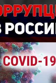 Во время пандемии COVID-19 в России возможно появление новых коррупционных схем
