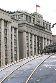 Госдума приняла в первом чтении законопроект о дополнительных мерах по противодействию коронавирусу