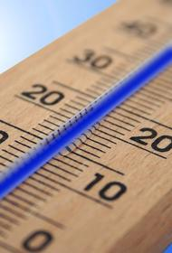 В Москве температура воздуха за сутки упала почти на 20 градусов
