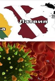 Страны Прибалтики достигли успехов в борьбе с коронавирусом