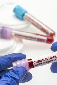 Эксперты отметили преимущества вводимой в Москве программы тестирования на COVID-19