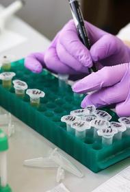 Сданная кровь с наличием антител к коронавирусу может спасти жизни людей