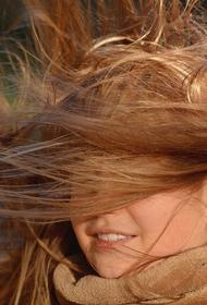 «И снова сильный ветер». Москвичей призвали быть осторожнее