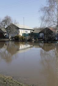В Прикамье паводок достиг рекордных показателей за всю историю наблюдений