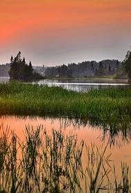 Синоптик призвал не ждать тепла в центральной части РФ до конца мая