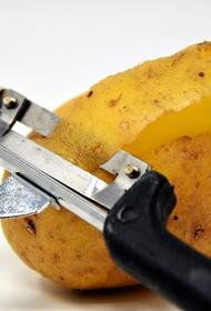 Почему старый картофель опасен и как нейтрализовать этот эффект