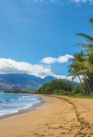 На Гавайях туриста арестовали за селфи на пляже в период карантина