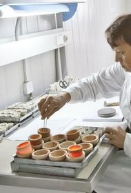 Ученые озвучили список ускоряющих старение человеческого организма продуктов