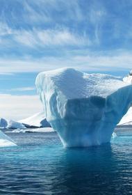 Специалист рассказал, каково быть полярником и трудиться в условиях постоянного холода