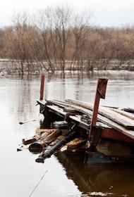Республика Коми: в большинстве районов начался спад воды после паводка