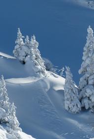 Синоптик рассказал, что снег в конце мая в Центральной России бывает раз в 30 лет