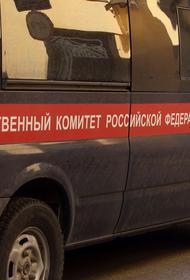Мать с ребенком погибли, провалившись в септик под Красноярском