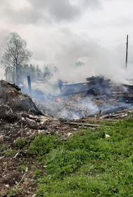 Трое маленьких детей погибли при пожаре в доме в деревне Тараканово Угличского района