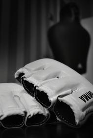 «Мы все бойцы»: UFC открыто поддерживает ЛГБТ-сообщество