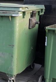 Тело новорожденного мальчика обнаружено в мусорном контейнере в Подмосковье