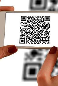 Минкомсвязь предлагает заменить паспорта на QR-коды в качестве эксперимента