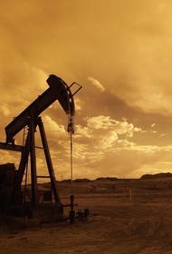 Чубайс ответил на вопрос про «дохлую лошадь» и снижение нефтяных цен