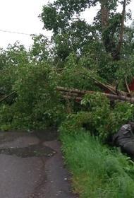 В Кузбассе ураганным ветром сдуло целую деревню