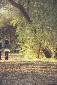Роспотребнадзор перечислил условия открытия детских лагерей