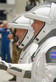 В Госдуме отреагировали на перенос запуска пилотируемого корабля Маска: «Такая глупость»