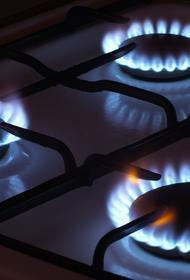 Белоруссия заявила, что долгов за российский газ у нее нет