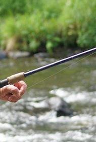 Тела пятерых рыбаков обнаружили в Вологодской области