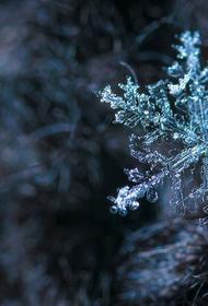В первый день лета в Салехарде выпал снег